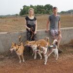 Mona und Marcel mit vier Hunden beim Workaway in Goa