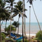 Boot zwischen Palmen am Anjuna Strand in Goa