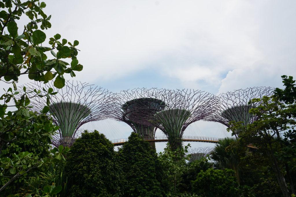 Künstliche Bäume in Gardens By The Bay Singapore