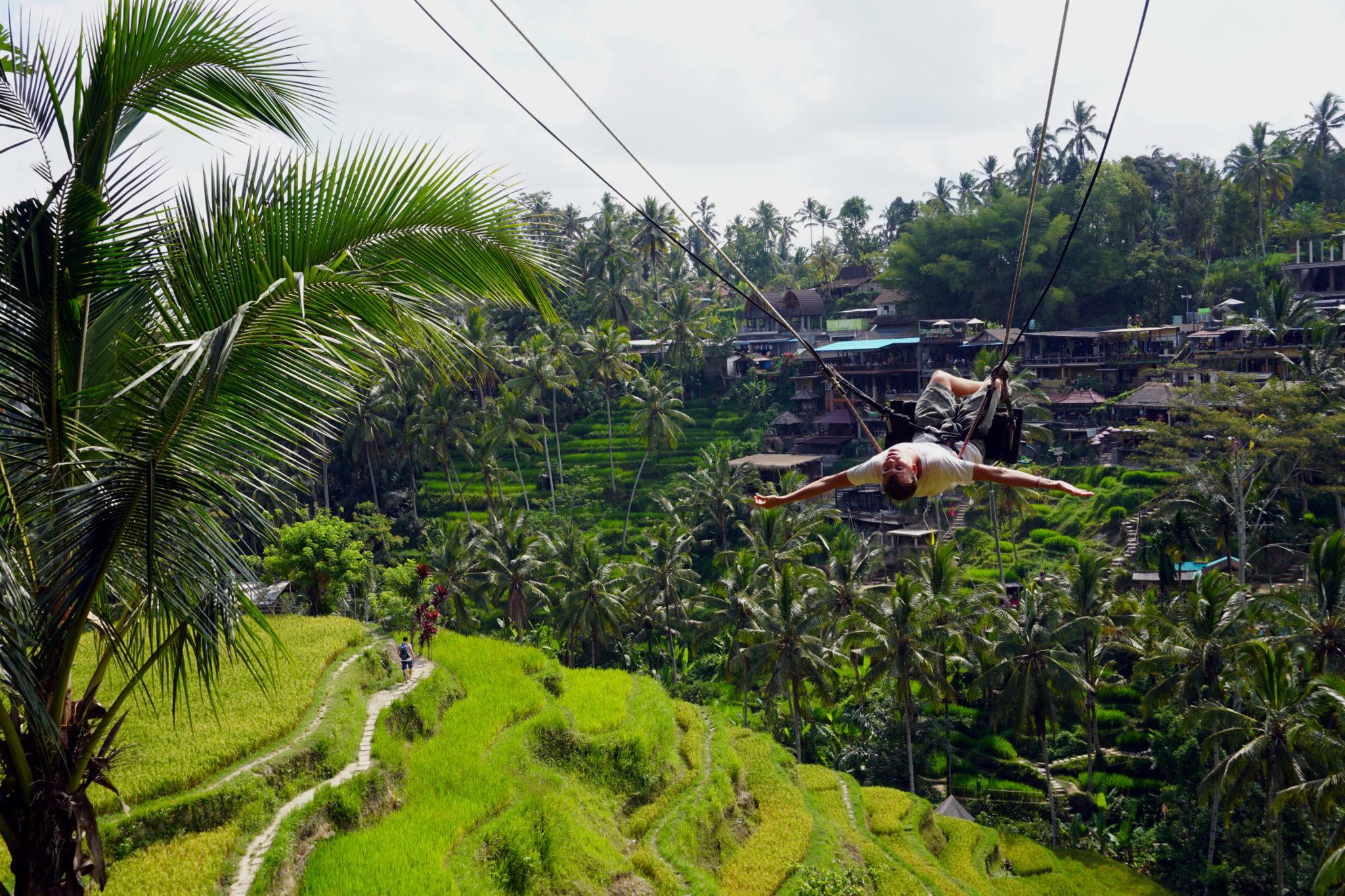 Tag in Ubud. Marcel auf einer Riesen-Schaukel über den Reisfeldern in Ubud.