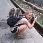 Mona mit zwei Affen auf dem Rucksack.