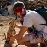Marcel mit STrtßenhunden auf Lombok