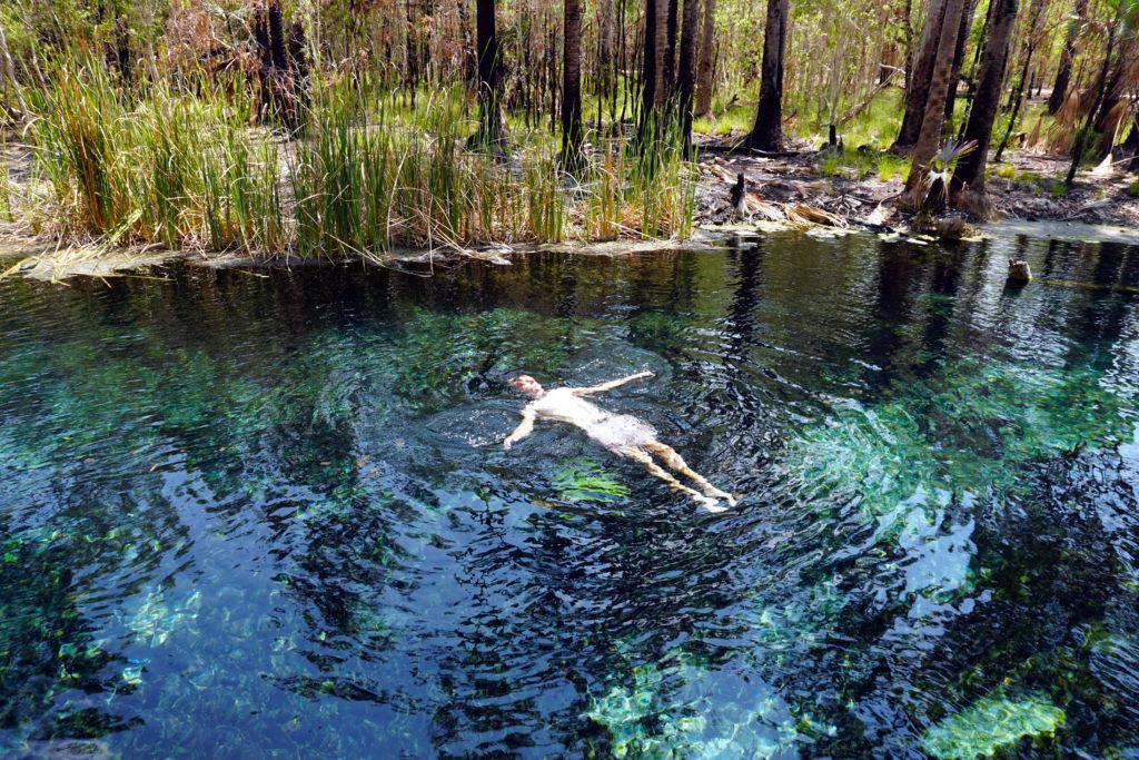 Marcel in den Mataranka Hot Springs. Drumherum verkohlte Bäume.