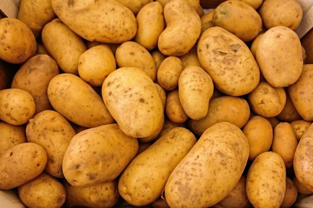 Foto von vielen Kartoffeln.