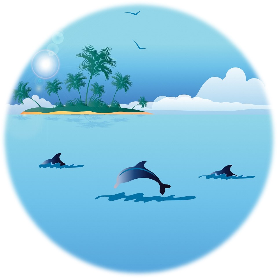 Bucket List Mona: Delfine