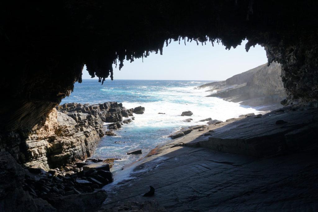 Admirals Arch auf Kangaroo Island